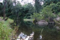 swimminghole